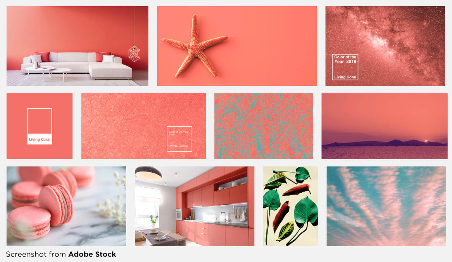 Living Coral, or Pantone 16-1546, is an optimistic blend of peach and gold with a pink hue that shows up more in the natural world than in Pantone's rendition.