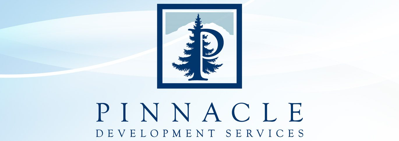 Custom logo design proces for Pinnacle Development Services