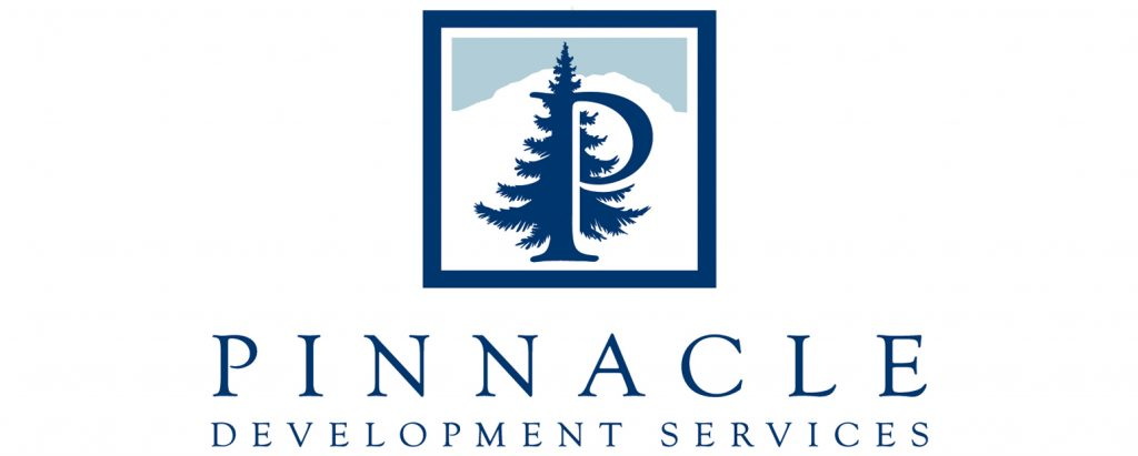 Brand new custom logo for Pinnacle Development Services designed by Primoprint.