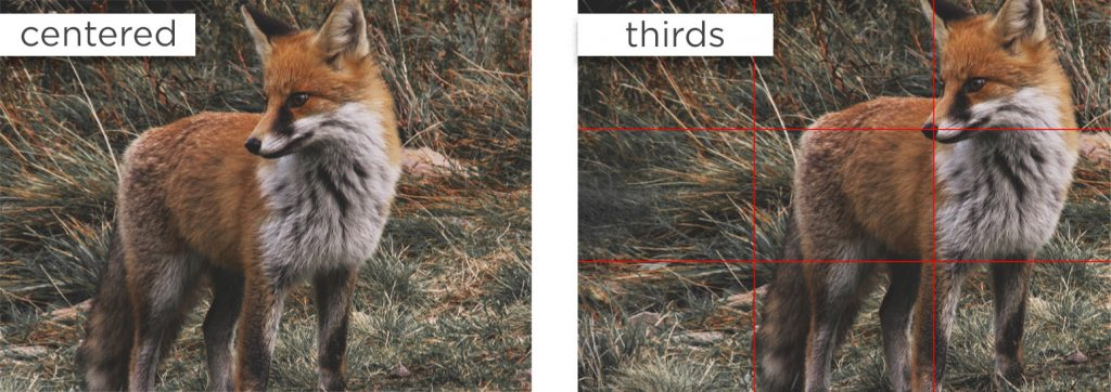 You can see the difference; photo centered and the same photo with rule of thirds.