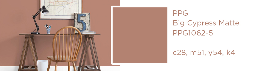 PPG Big Cypress Matte; c28, m51, y54, k4