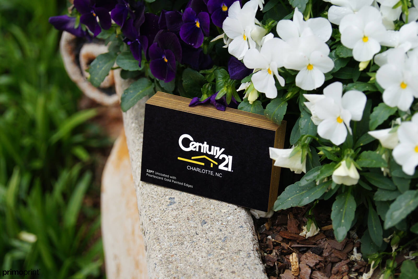 demand attention with Gold Painted Edge business card. Designed by Primoprint.